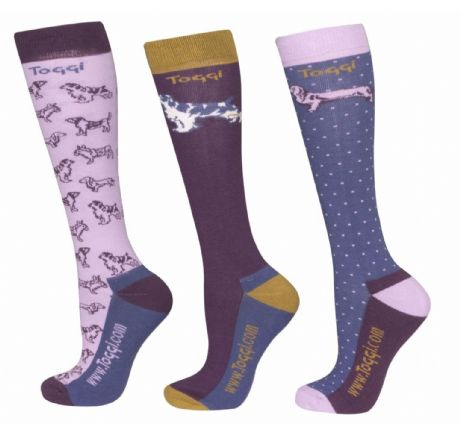 TOGGI PACK OF 3 HAWTHORNE DOGS PURPLE  SOCKS - RRP £17.00